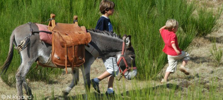Trek'âne – Randonnée avec un âne
